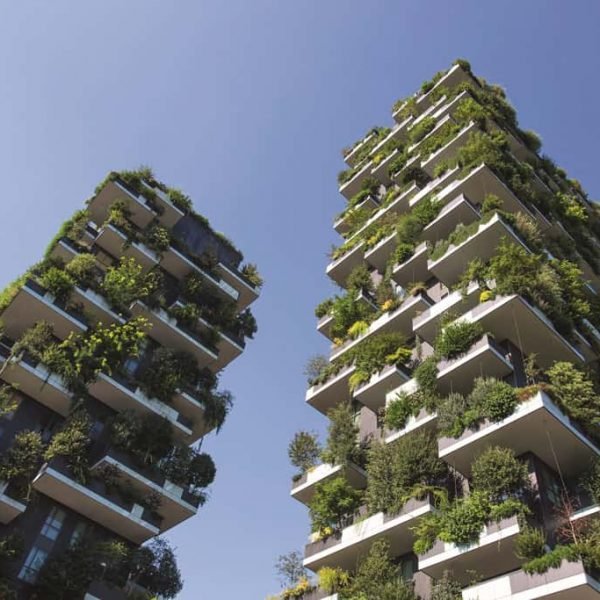 MILAN, ITALY - August 8, 2016: Skyscrapers Vertical forest with trees growing on balconies, built for Expo 2015. Look up.
